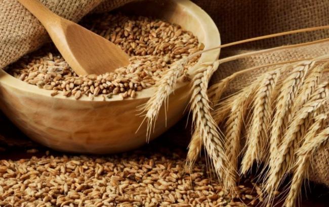 Аграрний експорт України виріс на третину за І квартал 2017 року