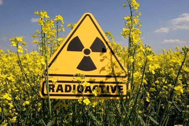 Відповідальний секретар Ради Союзу юристів України В.Яценко взяв участь у засіданні Національної комісії з радіаційного захисту населення України, яке відбулося 13 травня в режимі відео-конференції.